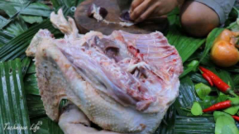 شکار اردک وحشی از داخل رودخانه و پختن خوراک با آن | (تکنیک زندگی 106)