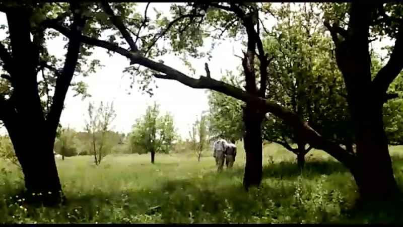 فیلم کژال.کارگردان و نویسنده توانا امیری