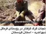 نجات گرگ گرفتار در روستای قره گل دیوان دره