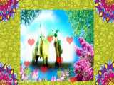 ازدواج پیامبر اکرم ص و حضرت خدیجه س