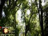ترانه   از تو ممنونم   با صدای آقای امیرعباس گلاب - شیراز