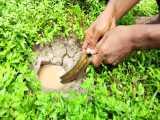 ماهی گیری با مار توسط این پسر بچه روستایی