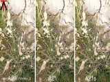 مقایسه دوربین Galaxy A20 vs Galaxy A21 vs Galaxy A21 s